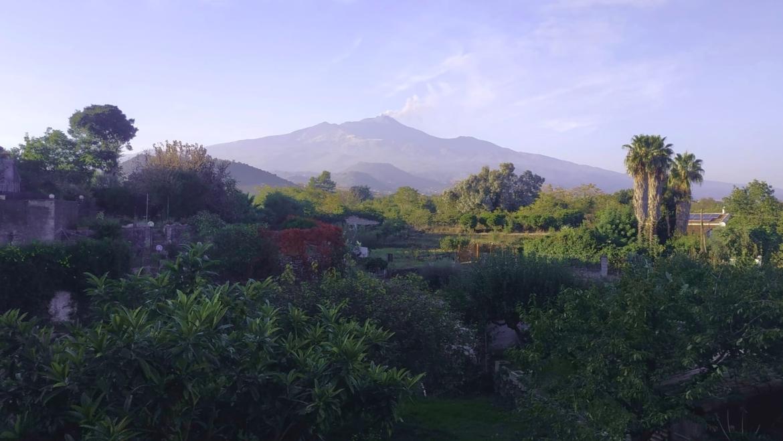 CASA SINGOLA con piccolo giardino e corte